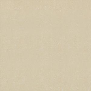 Gạch lát nền Đồng Tâm 80×80 8080DB006-NANO