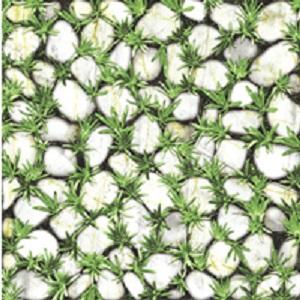 Gạch sân vườn Đồng Tâm 40×40 4040CLG003