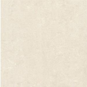 Gạch lát nền Đồng Tâm 100×100 100DB032-NANO