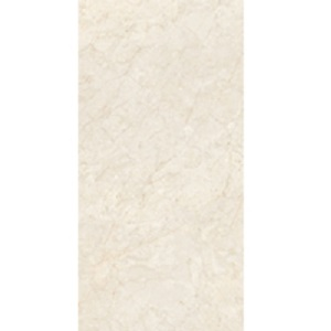 Gạch lát nền Đồng Tâm 40×80 4080FANSIPAN007-H+