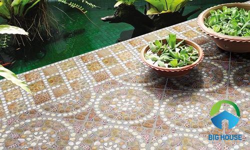 Gạch lát nền Đồng Tâm 50x50 DTD5050TRUONGSAVN