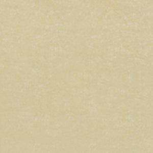 Gạch lát nền Đồng Tâm 60×60 6060DB006-NANO