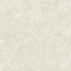 Gạch lát nền Đồng Tâm 60×60 DTD6060TRUONGSON005-FP