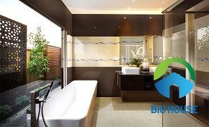 Gạch ốp tường Đồng Tâm 25x60 2560TIENSA006
