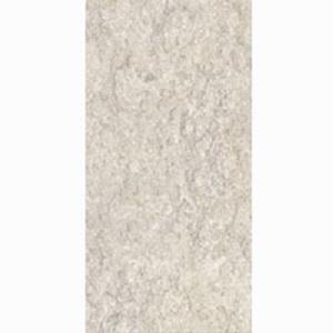 Gạch ốp tường Đồng Tâm 30×60 3060FOSSIL002