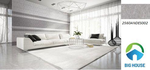 gạch ốp tường phòng khách đồng tâm 2560ANDES002