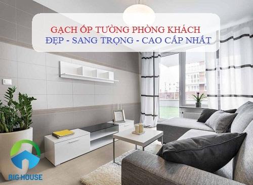 10++ mẫu gạch ốp tường phòng khách Đồng Tâm đẹp – Bảng giá chi tiết tham khảo