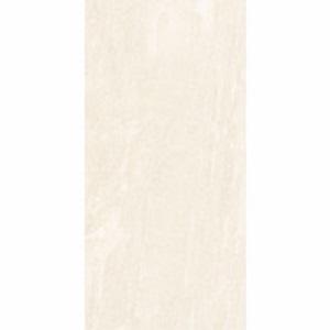 Gạch ốp lát Đồng Tâm 30×60 3060SAHARA005