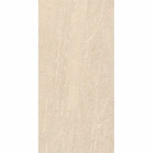 Gạch ốp lát Đồng Tâm 30×60 3060SAHARA006
