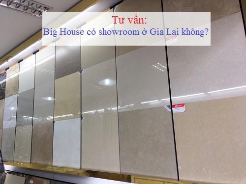 Big House có địa chỉ đại lý gạch Đồng Tâm tại Gia Lai không nhỉ?