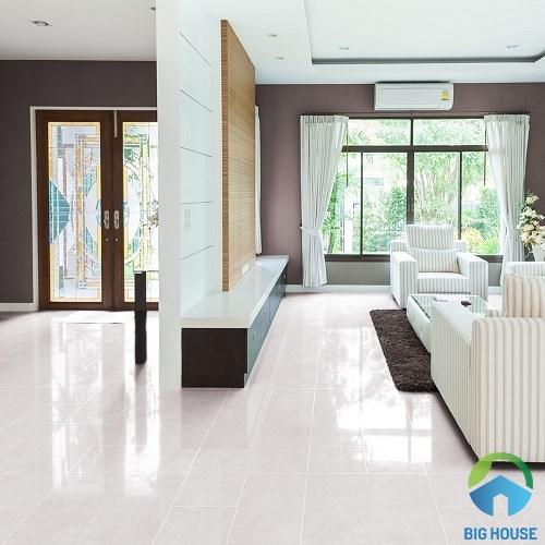 Gạch lát nền Đồng Tâm 60x60 6060PLATINUM002 2