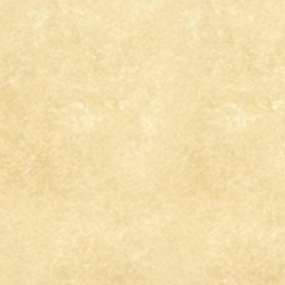 Gạch lát nền Đồng Tâm 60×60 6060WS004