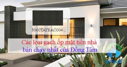 Các loại gạch ốp mặt tiền nhà hiện đang được sản xuất tại Đồng Tâm