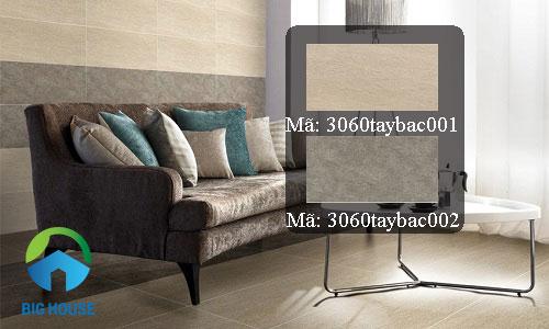 gạch ốp tường đồng tâm 30x60