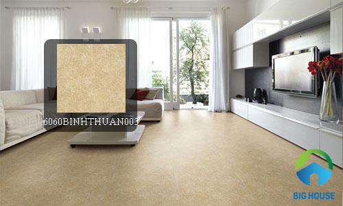 gạch granite đồng tâm 60x60 2