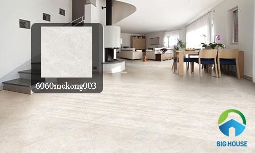 gạch granite đồng tâm 60x60 5