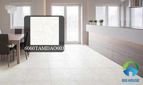gạch lát nền đồng tâm 60x60 4