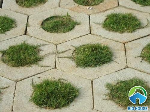 các loại gạch lát sân vườn 3