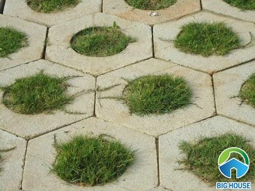 gạch cỏ lát sân vườn