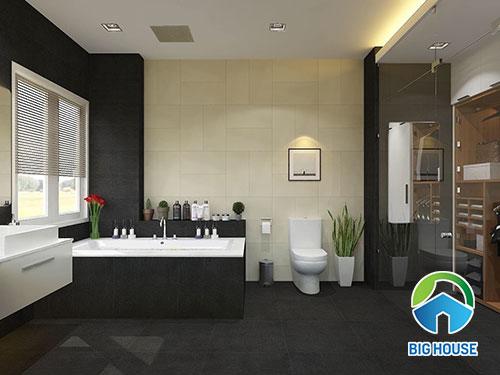 gạch ốp nhà vệ sinh 30x60 7