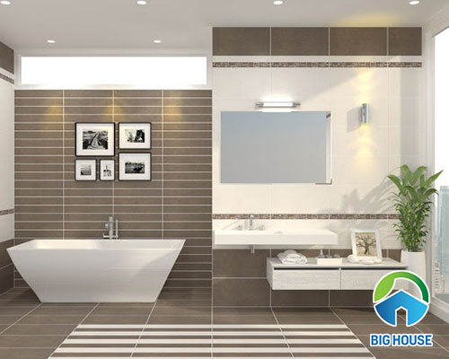 gạch ốp tường nhà vệ sinh 30x60