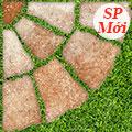 Giá mẫu gạch sân vườn Đồng Tâm 4040GREENERY003