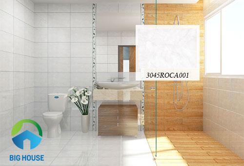 gạch ốp lát nhà vệ sinh đồng tâm 11