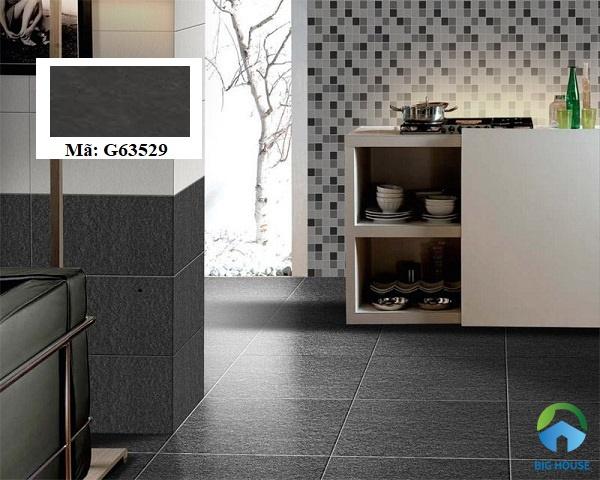 Mẫu gạch ốp Taicera G63529 chất liệu granite, kích thước 30x60